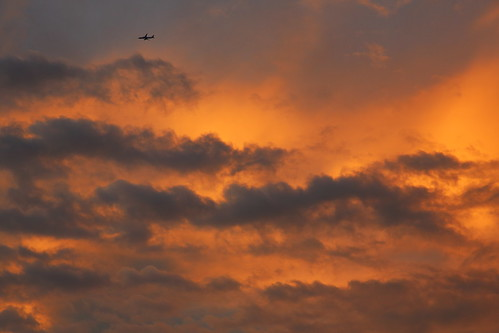 japan japon sky clouds plane airplane evening sunset nature shikoku ehime imabari 空 夕焼け 雲 飛行機 日本 今治 四国 日没 happyplanet asiafavorites