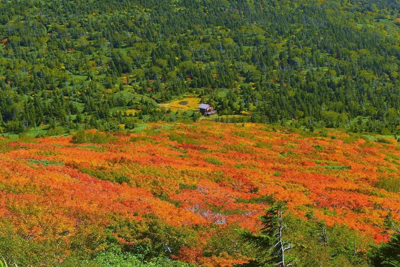 三ツ石避難小屋と紅葉