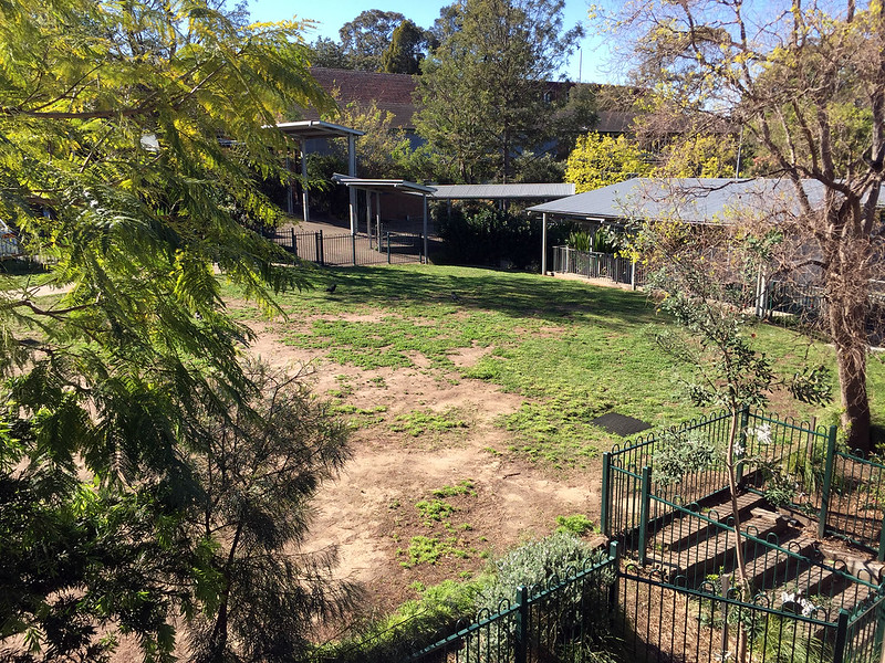 Lane Cove Public School