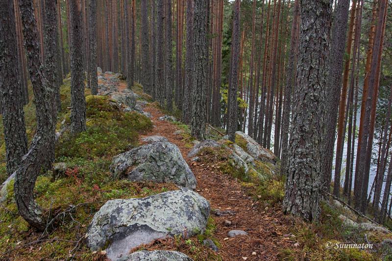 Petkeljärvi (25)