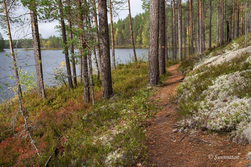 Petkeljärvi (16)