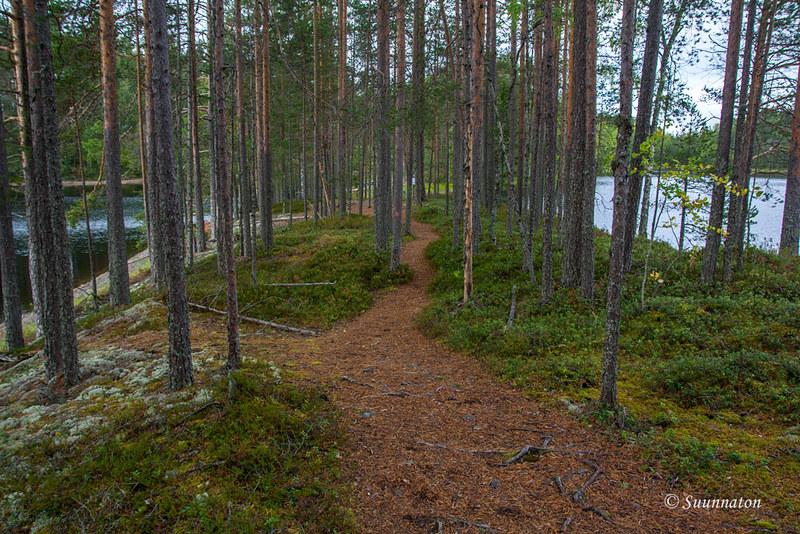 Petkeljärvi (9)
