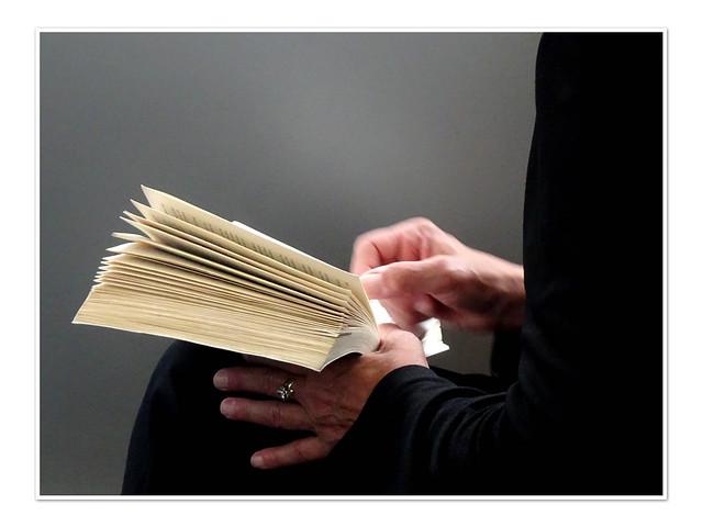 Die Leserin-3