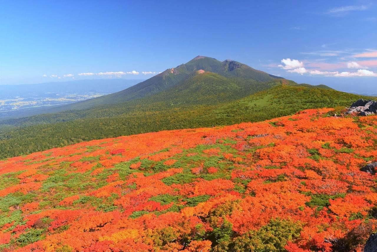 三ツ石山から望む岩手山と紅葉