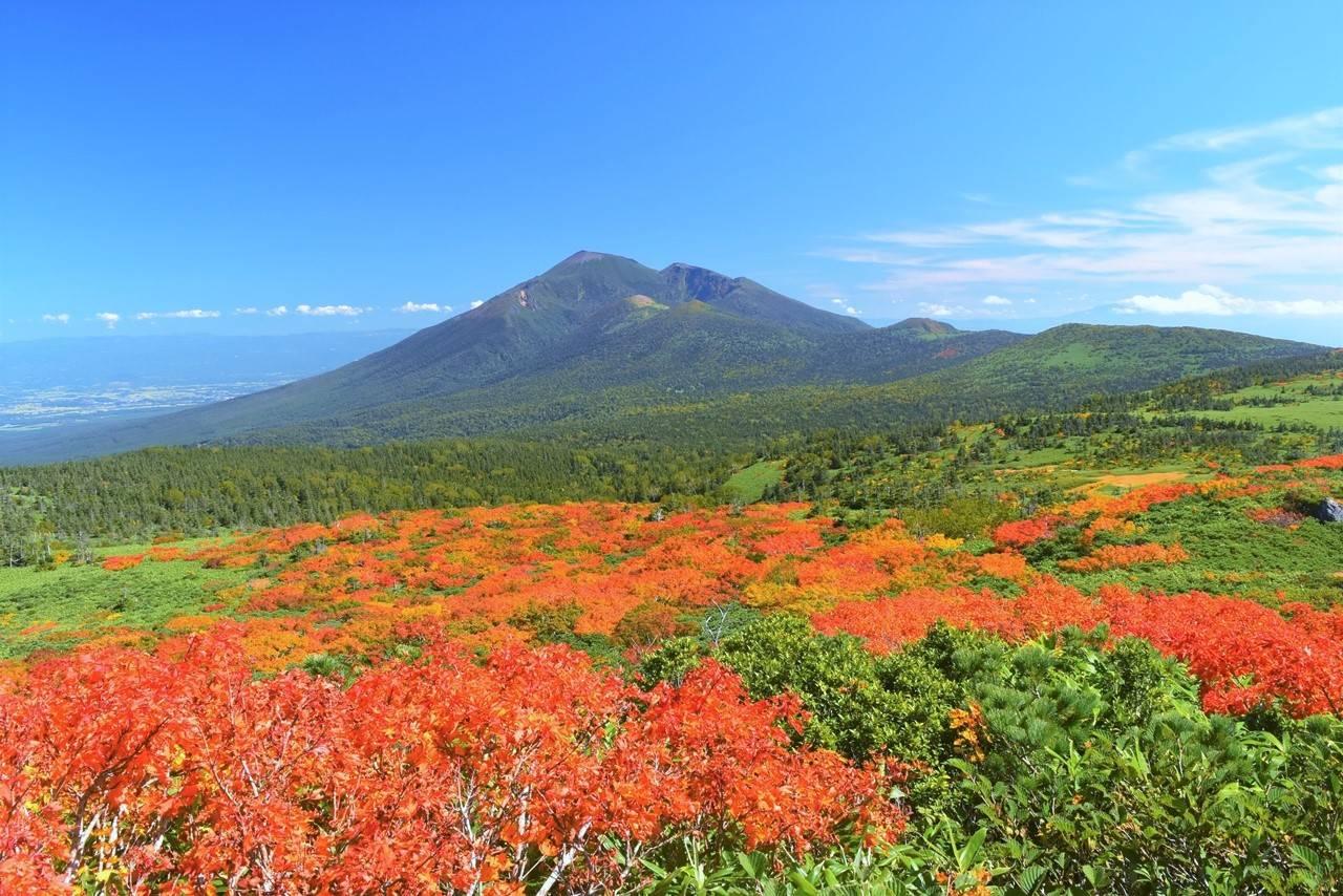 岩手山と紅葉