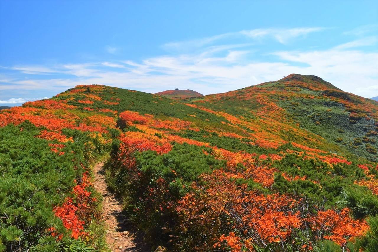 三ツ石山の真っ赤な紅葉 稜線登山
