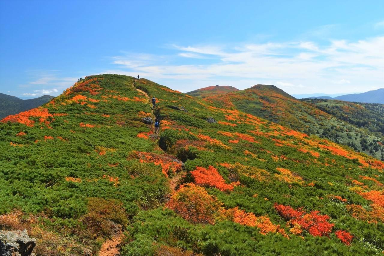 小畚山から三ツ石山の紅葉