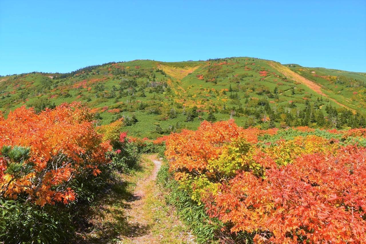 紅葉の裏岩手連峰縦走コース