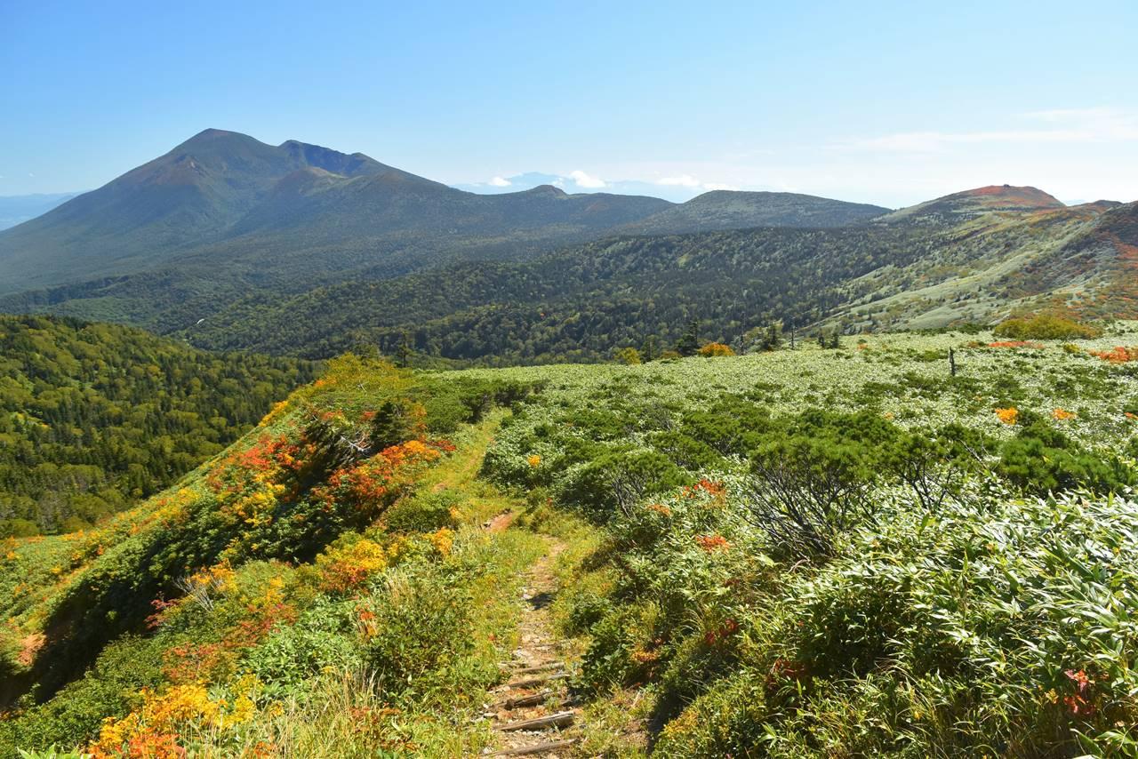 八瀬森分岐から眺める岩手山と三ツ石山