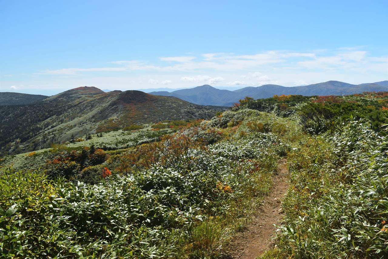 裏岩手連峰縦走登山 大深岳から三ツ石山へ