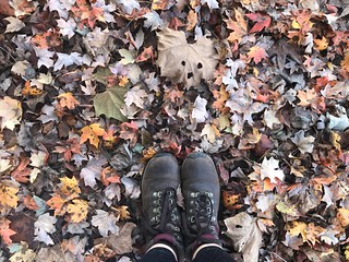 Autumn, oh how I love you