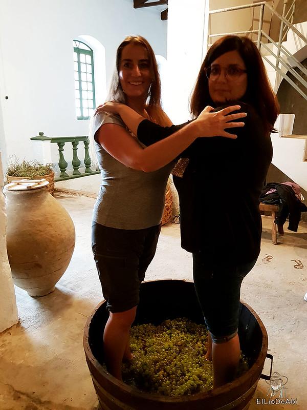 Fin de semana en la ruta del vino de la mancha por tomelloso y su entorno 42