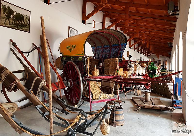 Fin de semana en la ruta del vino de la mancha por tomelloso y su entorno 17