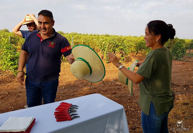 Fin de semana en la ruta del vino de la mancha por tomelloso y su entorno 7