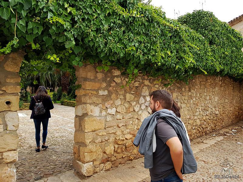 Fin de semana en la ruta del vino de la mancha por tomelloso y su entorno 80