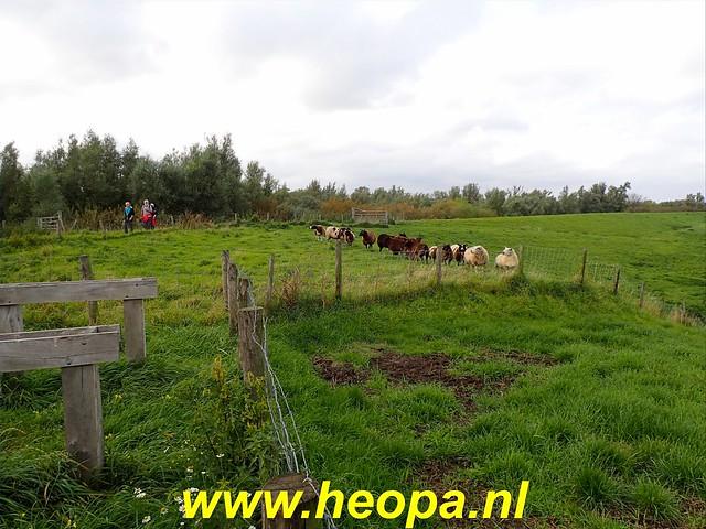2019-09-24   Zwijndrecht 26 Km (106)