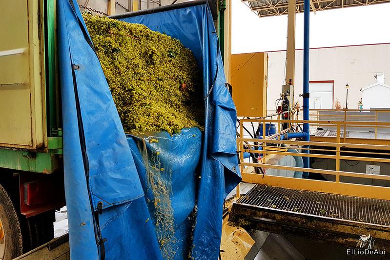 Fin de semana en la ruta del vino de la mancha por tomelloso y su entorno 26