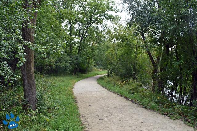 Fullersburg Woods