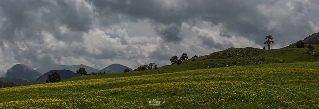 Le Vercors, au milieu des trolles et sous l'orage ...  The Vercors, in the middle of trolls and under the storm ...