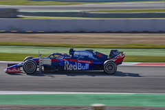 Daniil Kvyat Toro Rosso