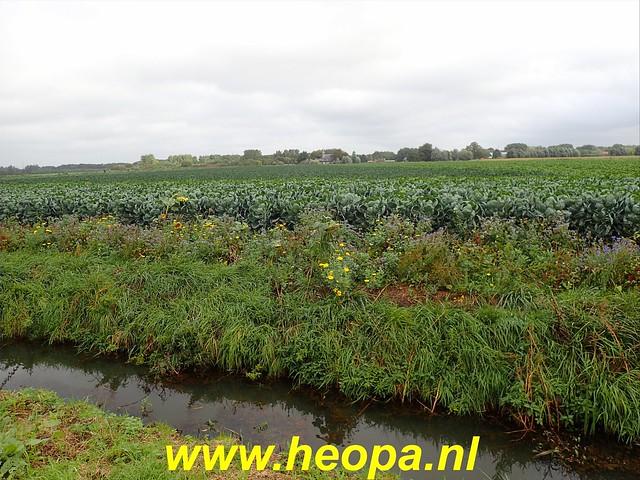 2019-09-24   Zwijndrecht 26 Km (41)