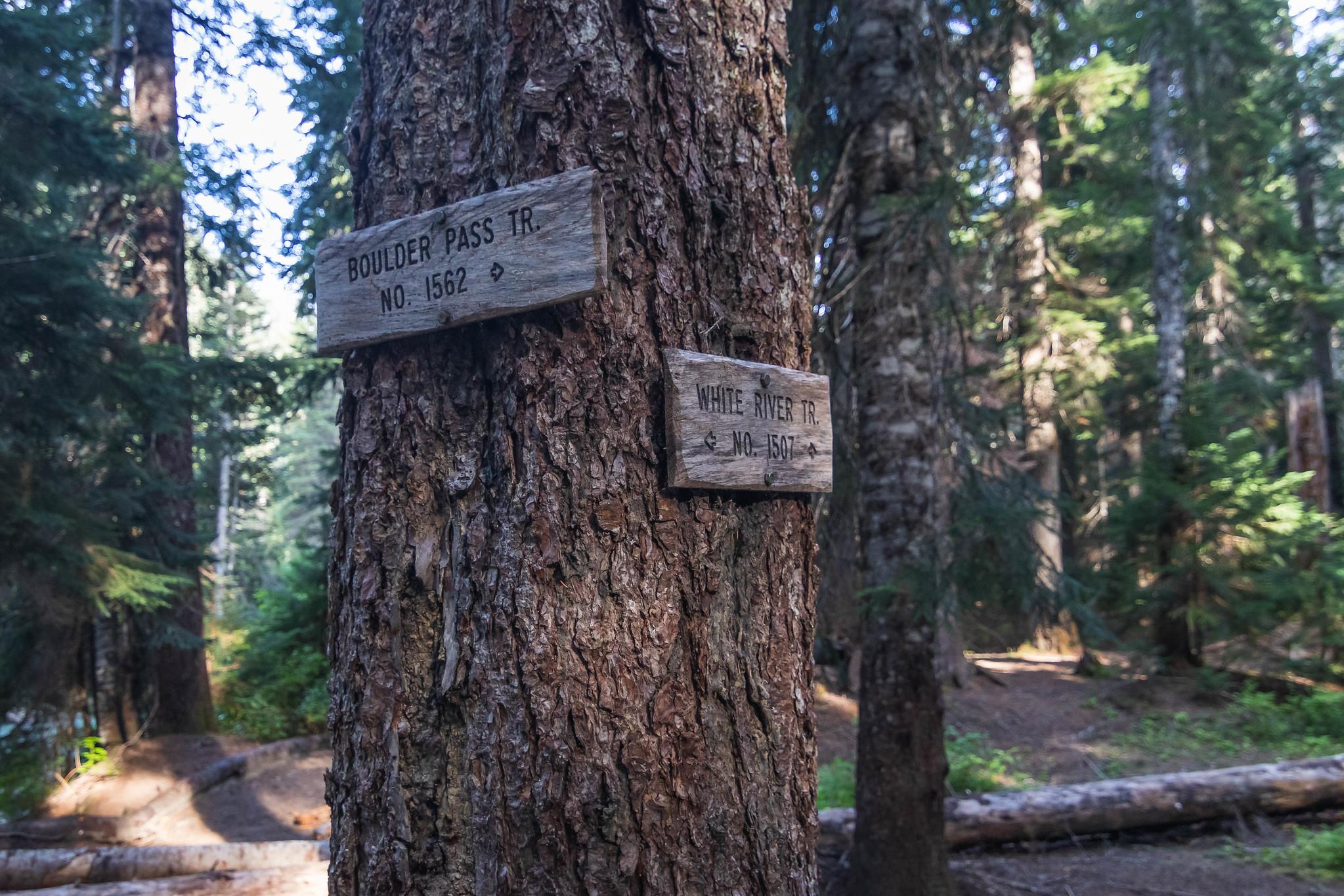 Boulder Pass Trail junction