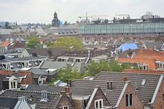 Dutch Rooftops