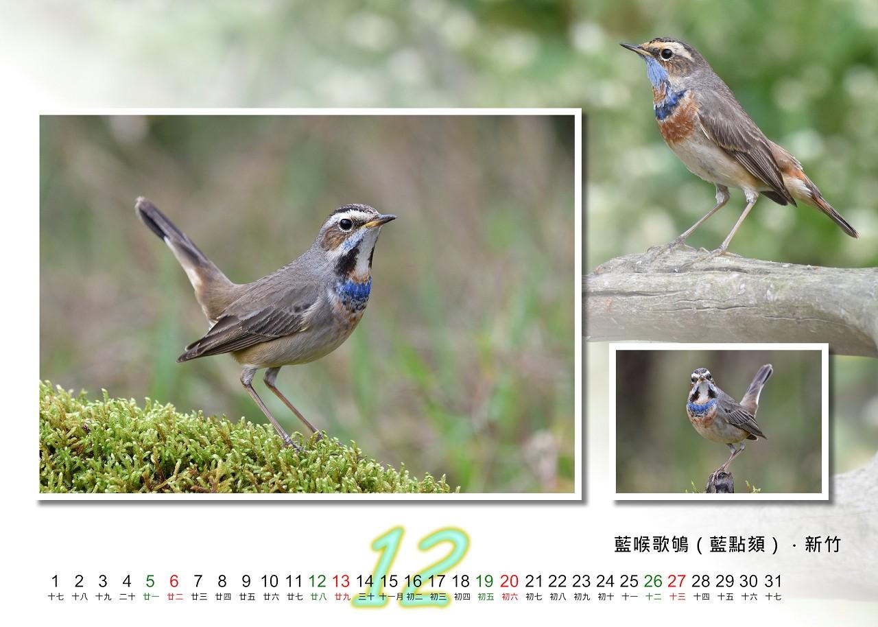 Calendar2020_12_S