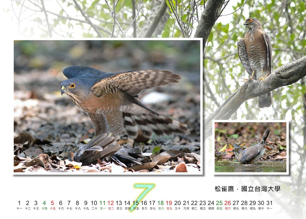 Calendar2020_07_S