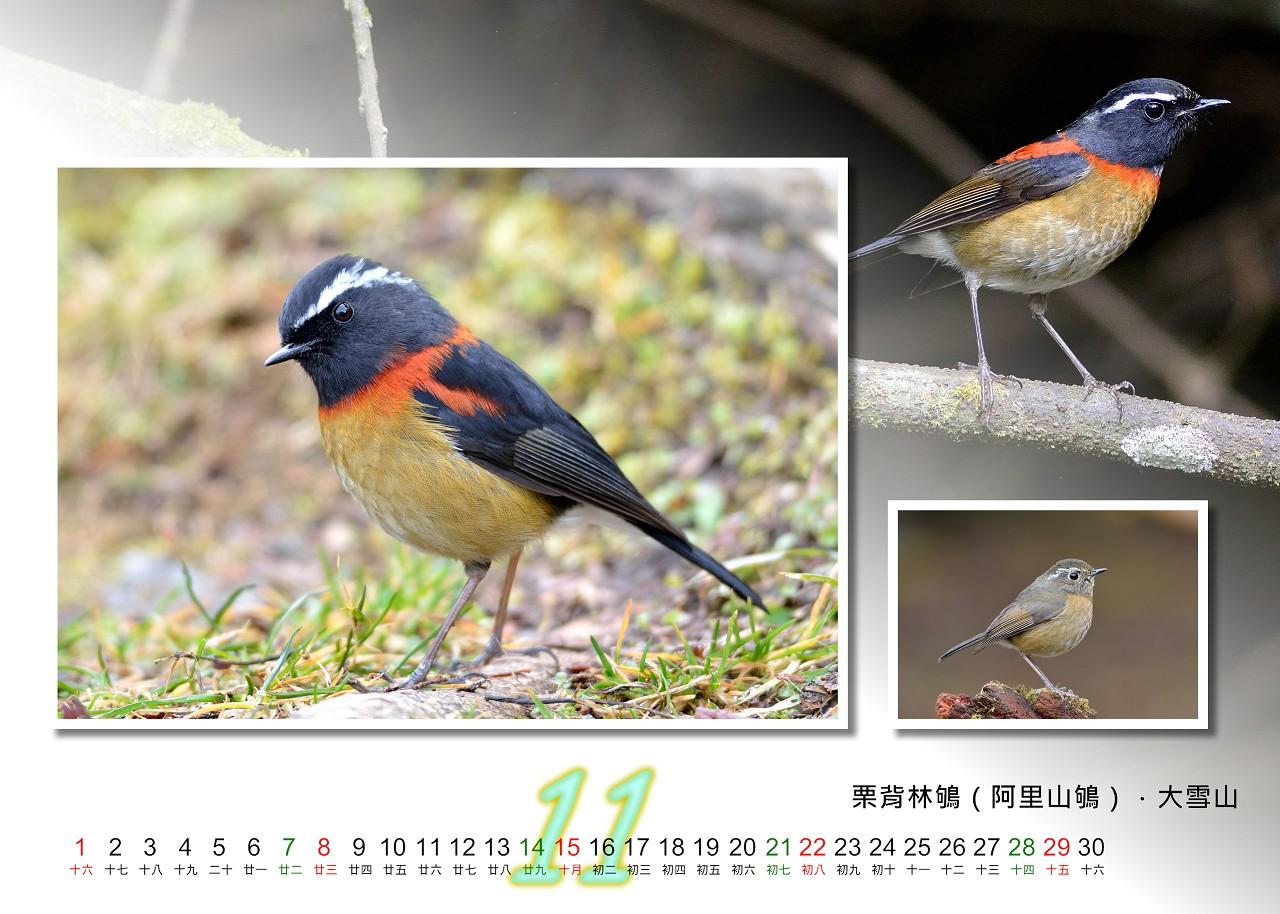 Calendar2020_11_S