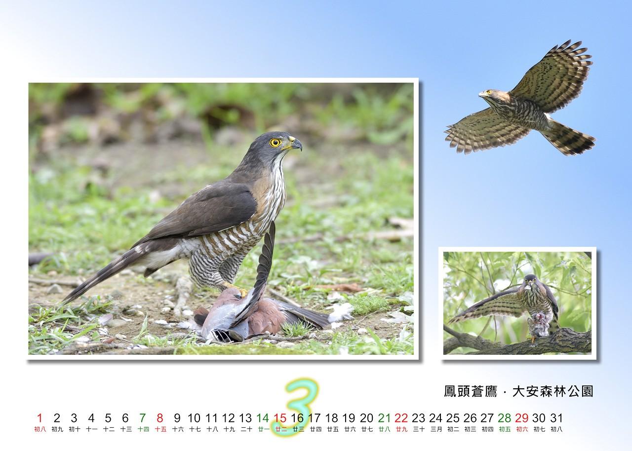 Calendar2020_03_S
