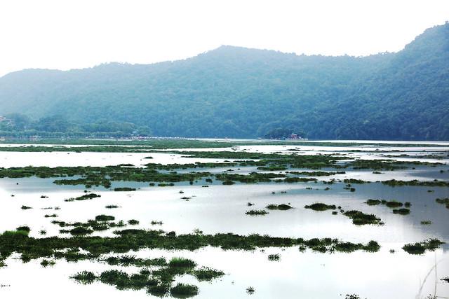Fewa lake with jal kumbhi 4 2019