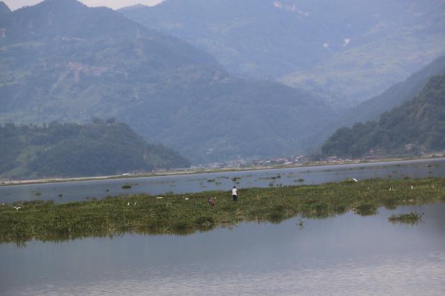 fewa lake with jal kumbhi 3 2019