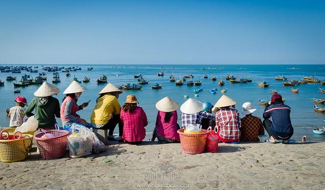 Phượt Bình Thuận chi tiết toàn tập 223