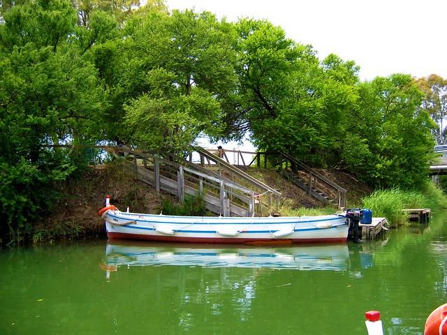 IMG_0036 - Fiume Ciane - il fiume dei papiri
