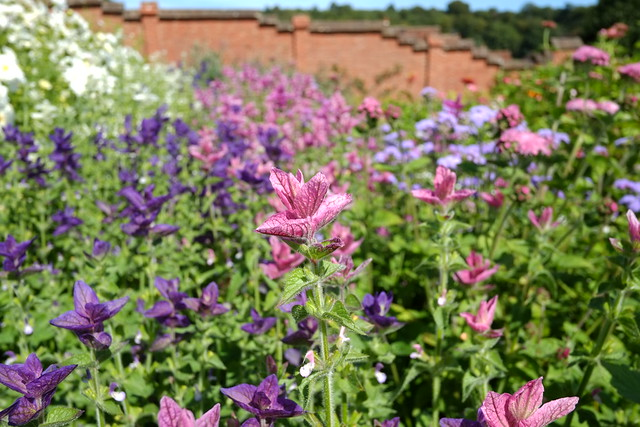 The Walled Garden at Chartwell