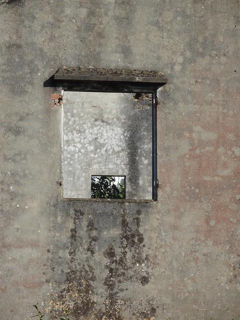 Framing Windows