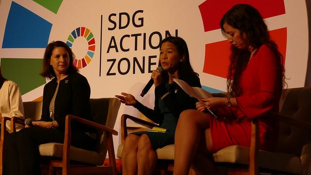 Panel - SDG Action Zone 2019