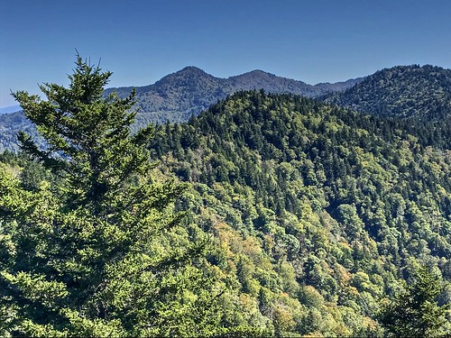 landscape view mountains forest trees blueskygreenncnorth carolinanational