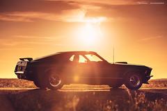 Grabber Blue 1970 Mustang Mach1 - Shot 4