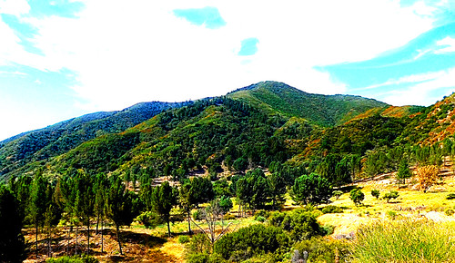 sanbernardinonationalforest california photo digital summer mountains chaparral forest conifers pines landscape