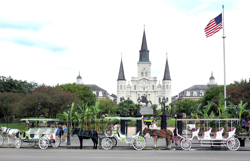 Carriages Jackson Sq New Orleans.