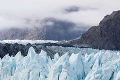 Marjorie Glacier - Glacier Bay National Park