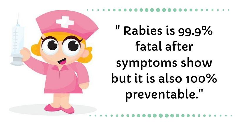 world rabies day 2019 quotes