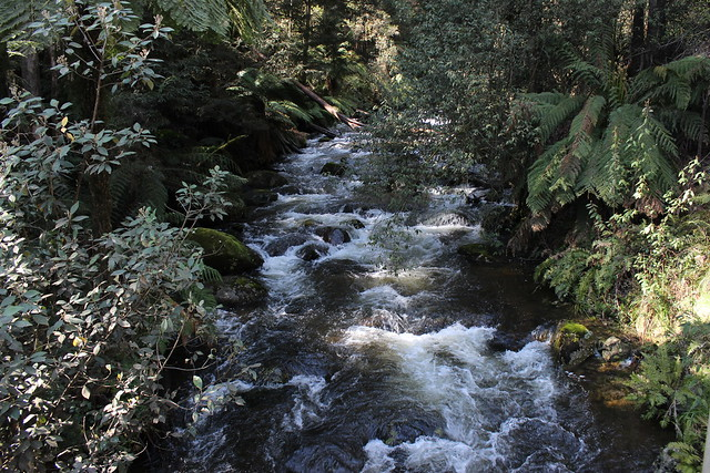 Royston River from 3km Bridge, Rubicon Valley