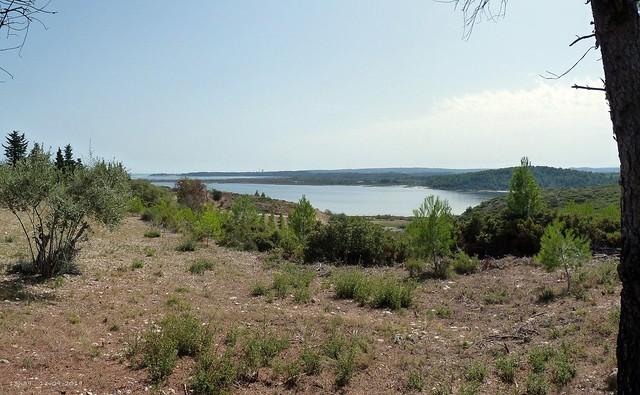 L'étang de Peyriac-de-Mer.....