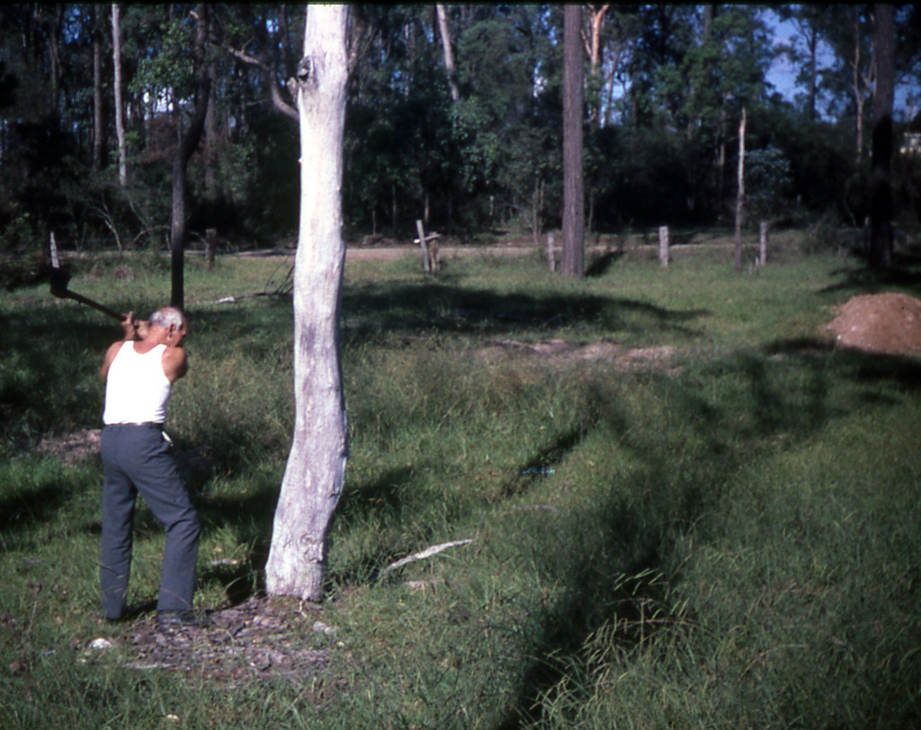 Dan Cleary pretending to chop down a tree with an axe.