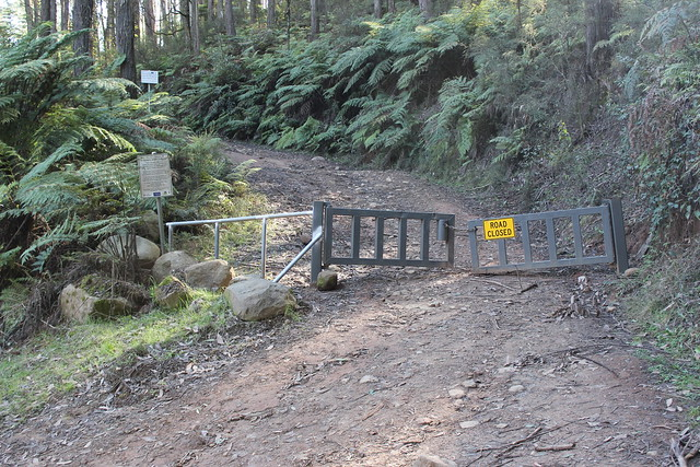 Gate on No 6 Track, Rubicon Valley
