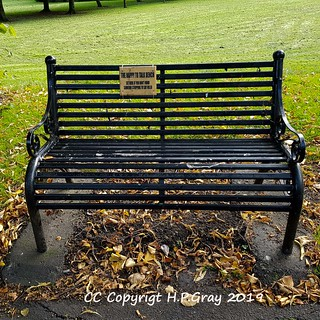 The happy to talk bench