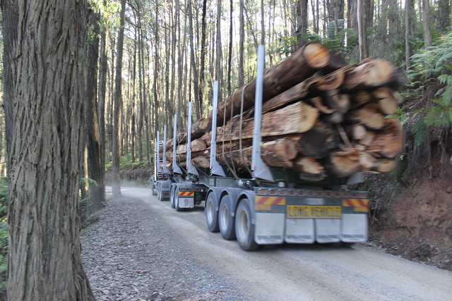 Logging truck on Royston Road, Rubicon Valley